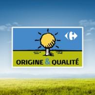 Visuel_origine