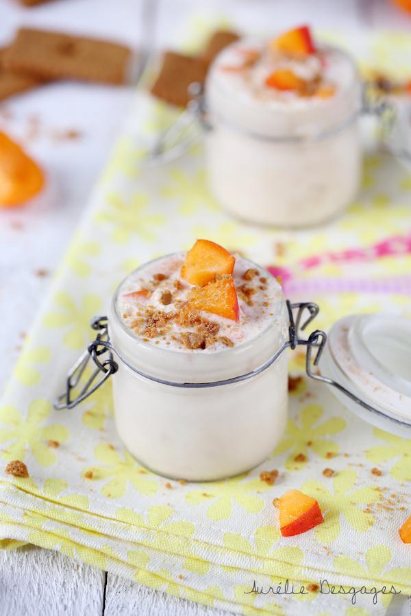 frozen yogourt abricot et speculoos